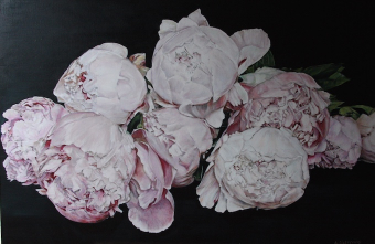 Dutch Peonies