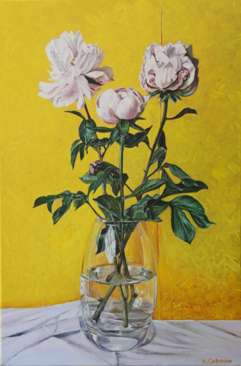 Pink Peonies, yellow background